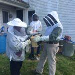 Hives 2
