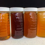 honey jars-4